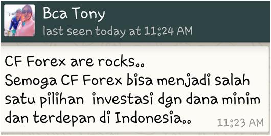 Pengalaman para trader forex