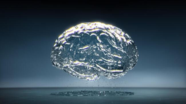 40 Fakta Tentang Otak Kita
