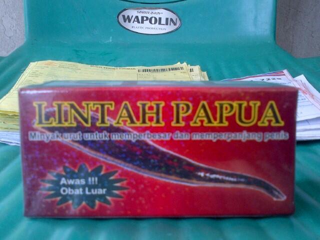 terjual jual minyak lintah papua asli di denpasar bali kaskus