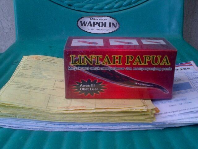 terjual jual minyak lintah papua asli di denpasar bali