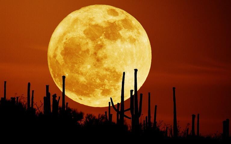 Apakah kita membutuhkan Bulan ?