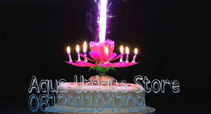 Lilin lotus unik untuk ulang tahun, bisa berputar dan ada lagu