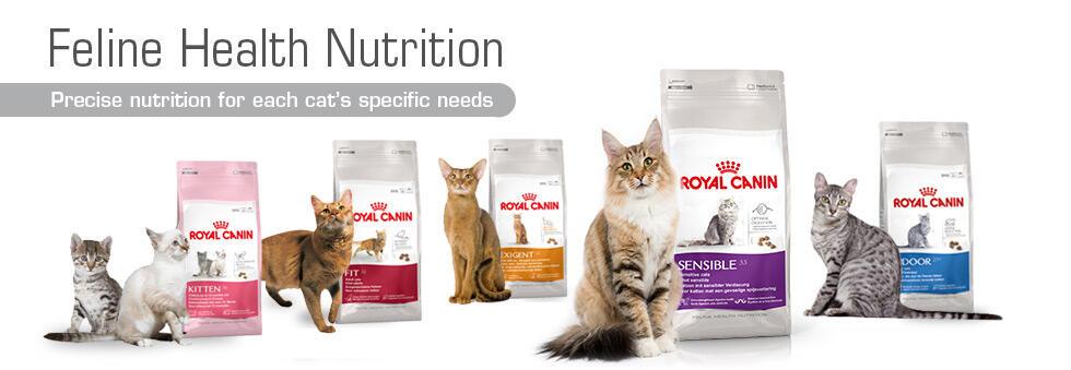 Cat Food Royal Canin Kaskus