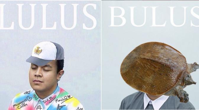 Meme Lucu Cover Album Tulus Hebohkan Dunia Maya