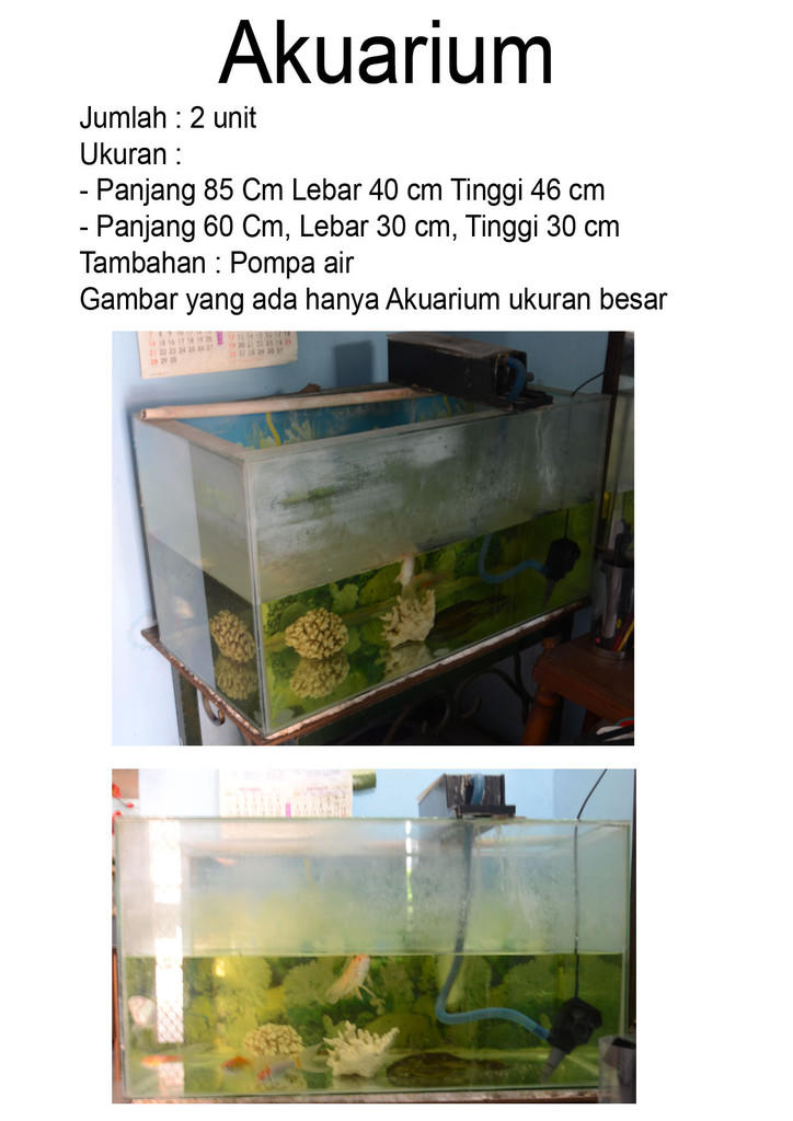 Akuarium (P x L x T = 85cm x 40cm x 46cm) CUMA RP.300.000