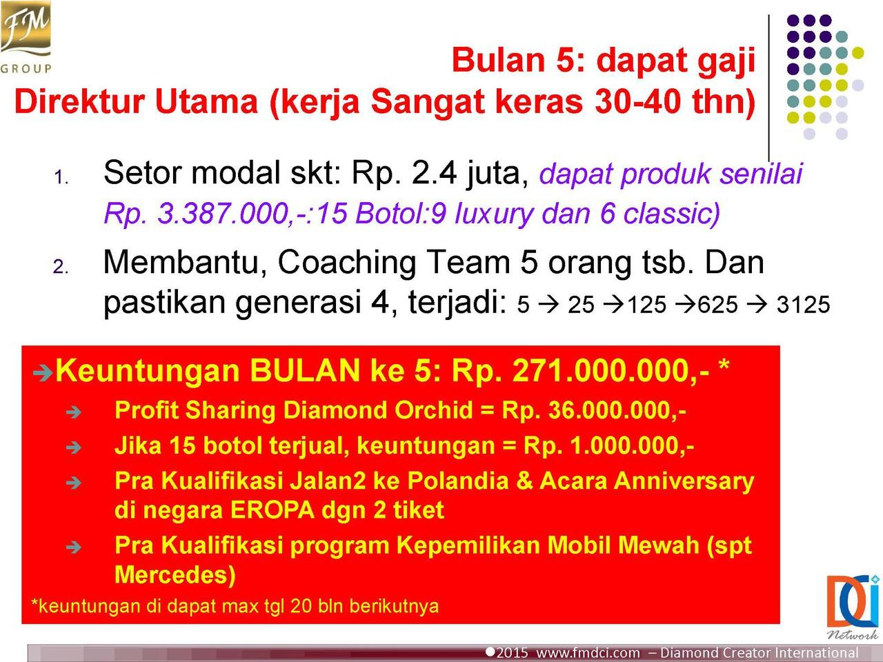 Program Diamond FM Group Indonesia Income Rp 270 Bulan