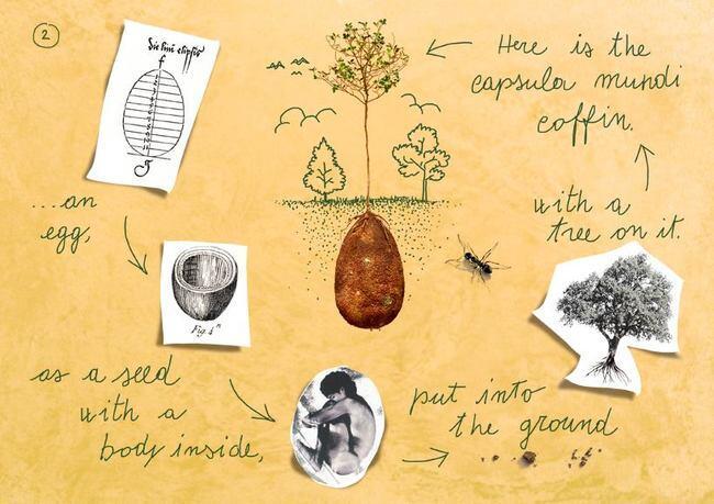 Capsula Mundi: Merubah Tubuh Manusia Menjadi Pohon