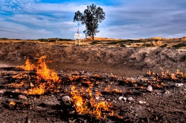 Api - Api Abadi di Dunia [PICT]