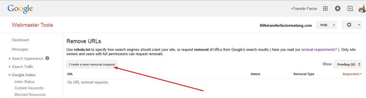 {ask} Menghapus postingan melalui Google Webmastertool?