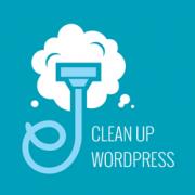 Bersihkan Database untuk Meningkatkan Performa Website