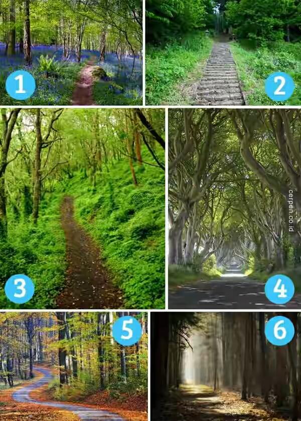 pilih gambar untuk ketahui sifat agan