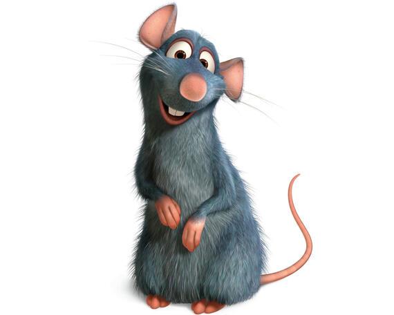 Cara Alami Mengusir Tikus Di Rumah Terbukti Ampuh Page 38 Kaskus