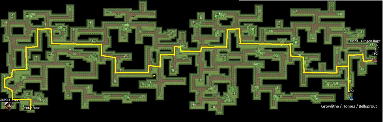 Viridian Maze Pokemon Revolution Online