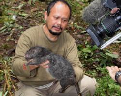 7 Hewan Berukuran Raksasa Yang Pernah Ditemukan di Indonesia