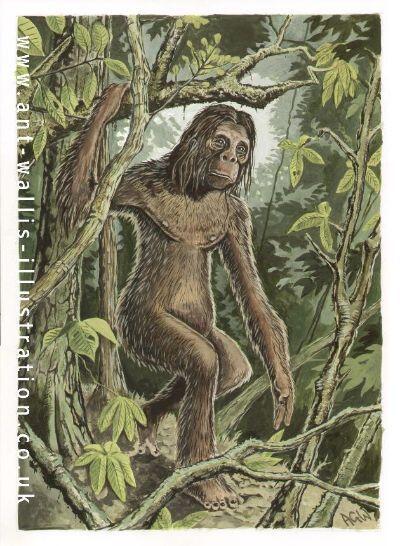Orang Pendek, sang Cryptid dari Sumatera