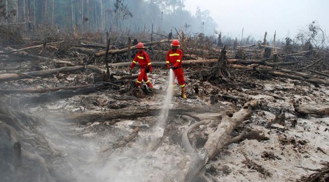 (asing)Pimpinan Perusahaan Terduga Pembakar Hutan Dijerat Pasal Berlapis