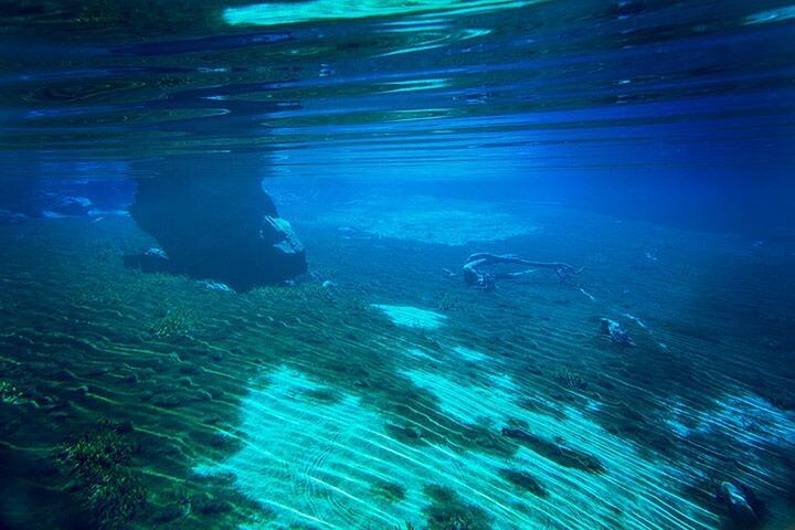 Blue Lake di Selandia Baru, Danau dengan Air Paling Bening Sedunia