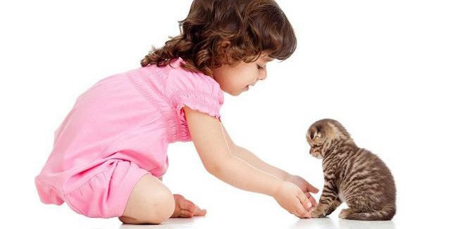 Yuk Gan, Mari Kita Ajarkan Untuk Mencintai Binatang Sejak Dini