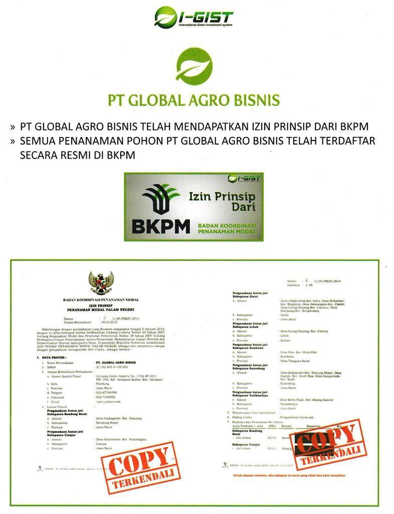 Bisnis Pohon ANTI RUGI! Menguntungkan dan Menyelamatkan Bumi dengan GO GREEN! CEKIDOT