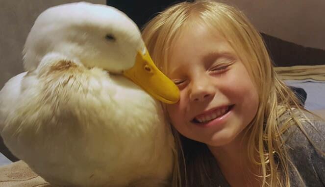 5 Kisah Nyata Persahabatan Manusia Dan Hewan yang Menggetarkan Hati