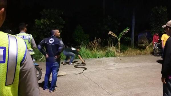 Ada Sosok Hitam Panjang Lewat, TNI-Polri Kocar-kacir