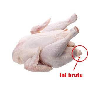 6 Kepribadian Agan Berdasar Bagian Ayam Goreng Kesukaan