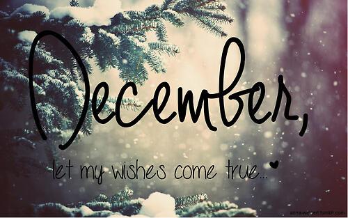 december bahagia bersama kalimayagaleri