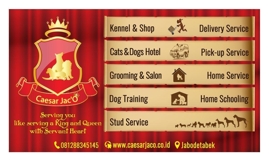 Kandang Besi Lipat & Pagar & PetCargo ( Anjing Kucing Kelinci ) Harga Bersahabat