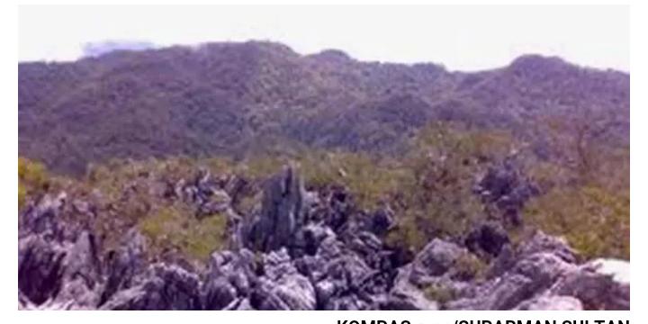 Dua Pendaki Gunung Mekongga Ditemukan Meninggal