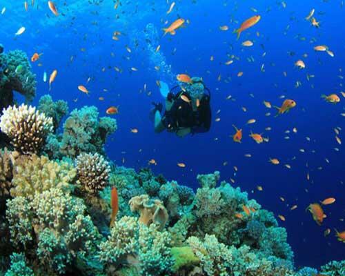 Mengintip Keindahan Laut Tulamben Bali - Sesi Pemotretan Model Bawah Laut