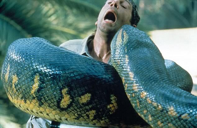 Melihat jajaran ular terbesar di dunia kaskus melihat jajaran ular terbesar di dunia reheart Image collections