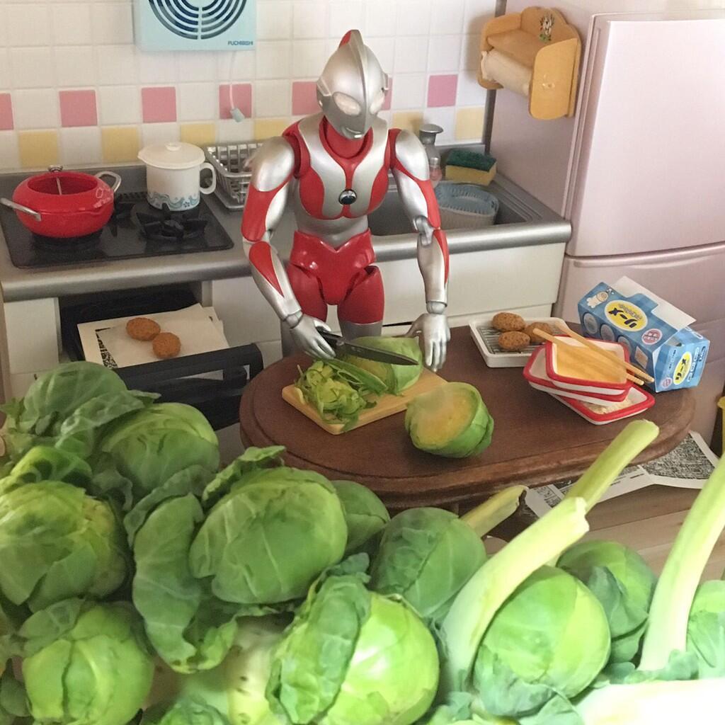 Inilah Yang Dilakukan Ultraman Setelah Pensiun Gan...
