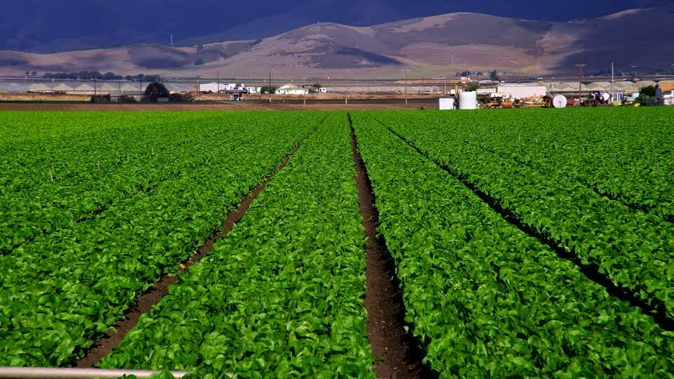Apa Itu Pertanian Terpadu Pelajari Lebih Dalam Gan Kaskus