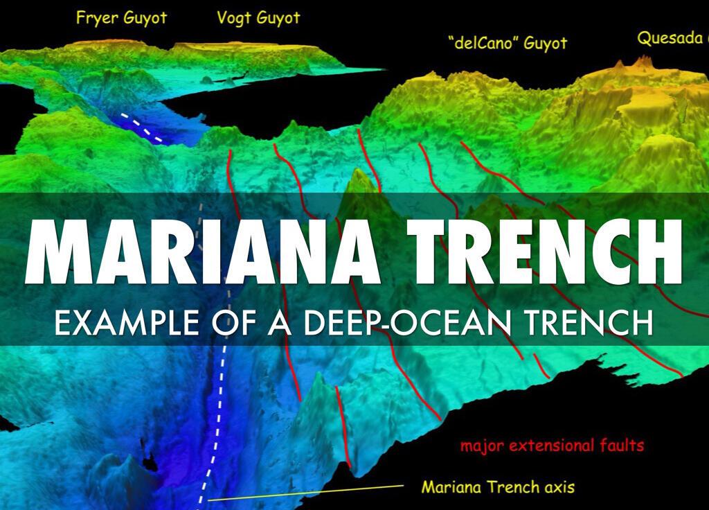 10 Makhluk Aneh Nan Menakjubkan Penghuni Palung Mariana