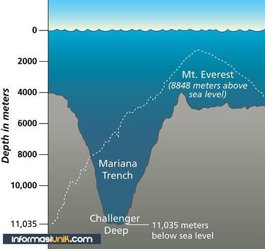 Palung Mariana Laut Terdalam di Dunia