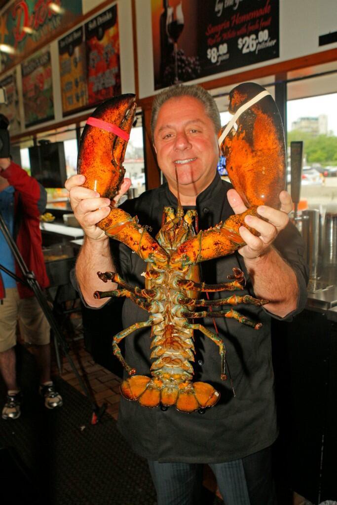 Lobster Ini Ditawar Rp13 Juta,Tapi Pemiliknya Pilih Lepas ke Alam