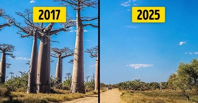 10 tempat di bumi ini bakal musnah beberapa tahun lagi jika manusia tetap egois