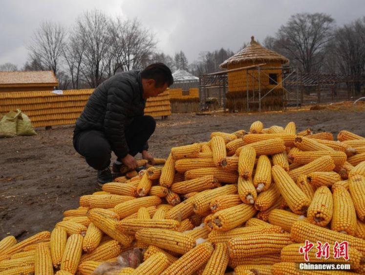 """Petani China Ini Membangun """"Rumah dan Halaman Emas"""" !"""