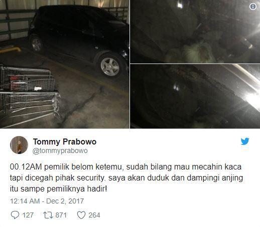 Gimana Tanggapan Agan Soal Anjing Malang yang Ditinggal 8 Jam di Mobil?