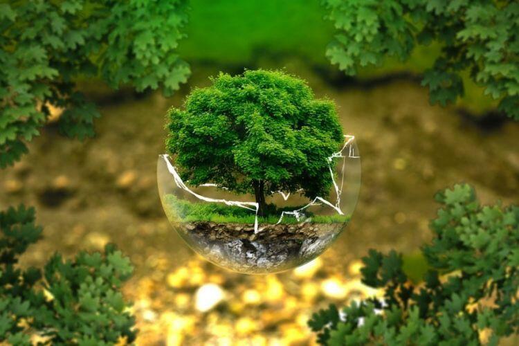 [EVENT COC SPECIAL EDITION] Agan dan Sista Ngaku Cinta Lingkungan? Buktikan di Sini!