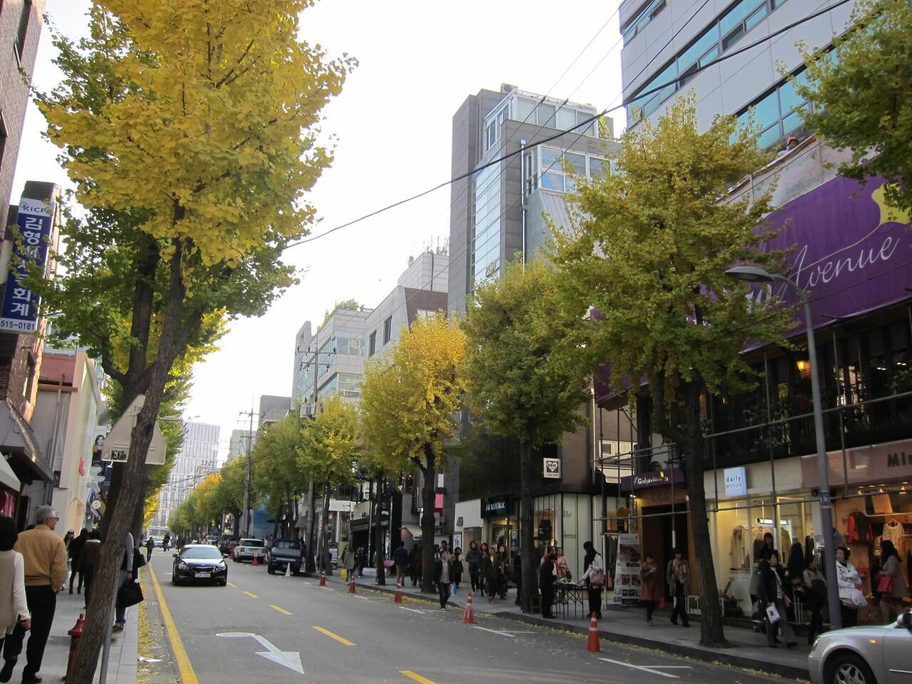 Favorit Turis, Kamu Wajib ke Sini kalau Lagi di Korea Selatan