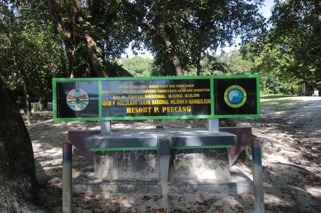 Pulau Peucang yang Eksotis di Ujung Kulon, Banten