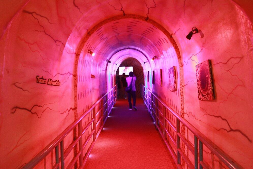 Yuk Menelusuri Pabrik Manusia di MuseumTubuh Bagong Adventure