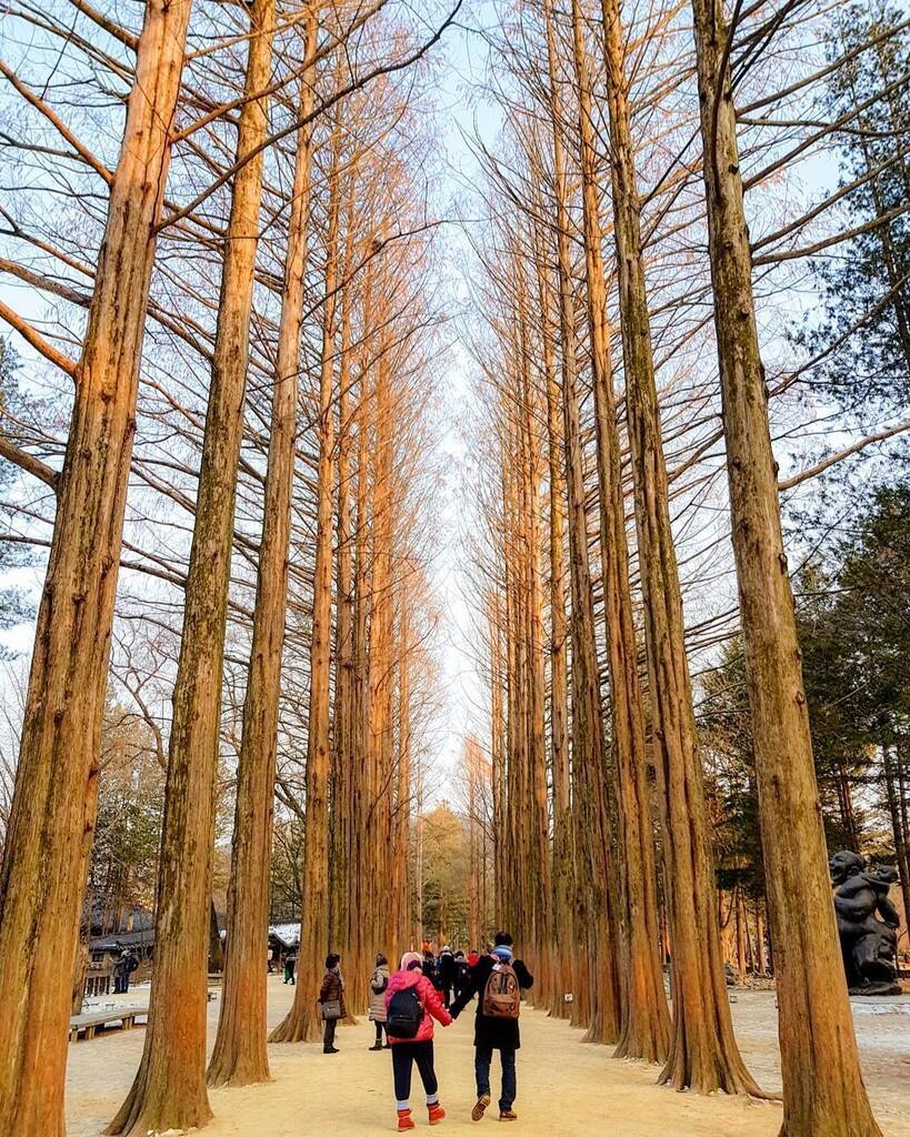 Tips Liburan Winter di Korea Ini Nggak Akan Ada di Buku Traveling!