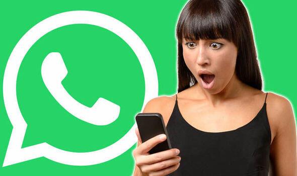 Fitur Whatsapp Ini Ternyata Belum Banyak Yang Tau Lho..