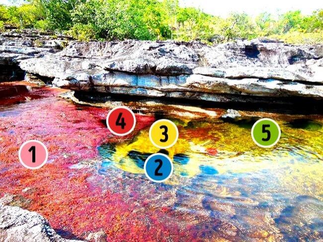Inilah Fenomena Alam Misterius yang Pernah Ada, Nomer 4 & 8 Bikin Ngeri Gan!