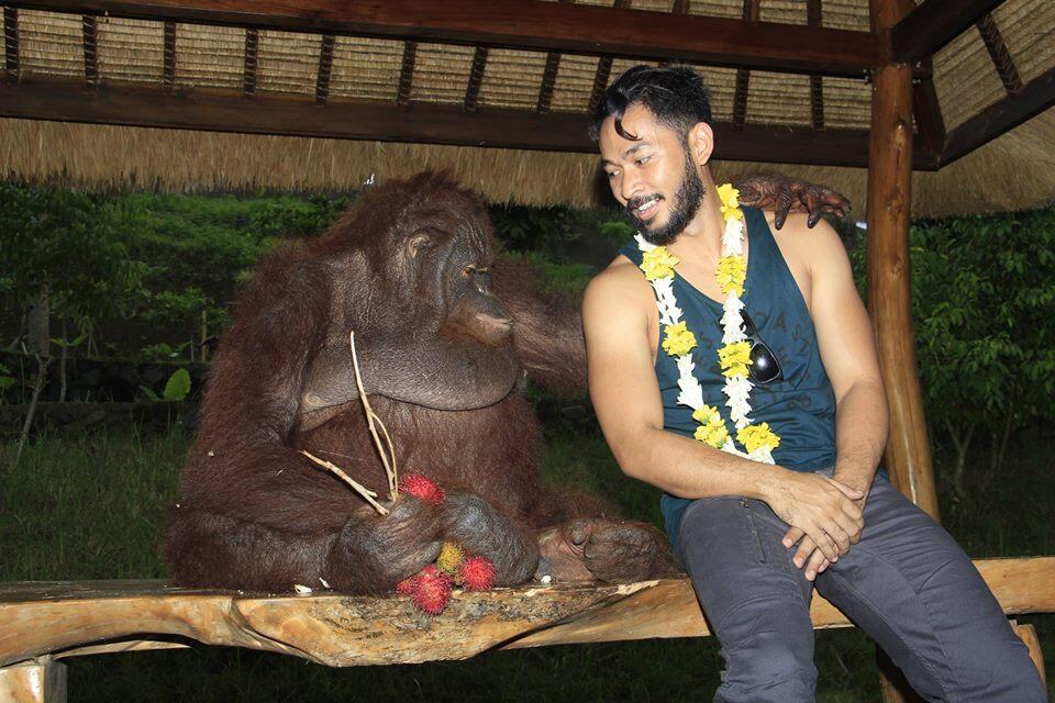 Serasa Hutan Beneran! Ini dia Elephant Park Lombok.