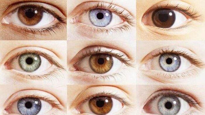 Tampak Terang atau Gelap, Warna Iris Mata Ternyata Ungkap Kondisi Kesehatanmu, lho!
