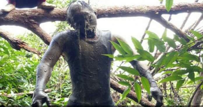 anak vs bapak sumatra selatan