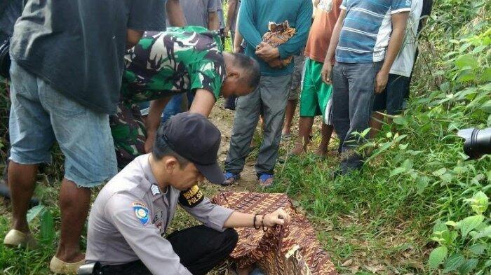 Jasad Tergantung di Pohon Karet Gegerkan Warga Desa Kungkai